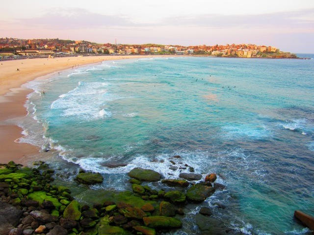 Running up along the rocks, overlooking Bondi